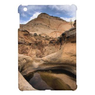 CAPITAL REEFS iPad MINI COVERS