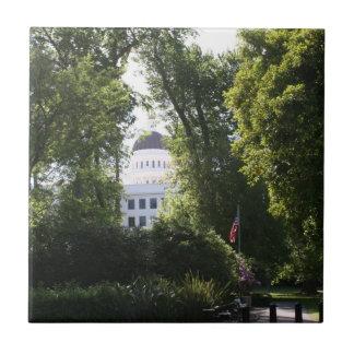 Capitol peeking through the Trees Tile