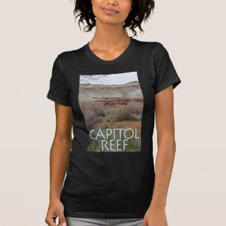 Capitol Reef Shirts