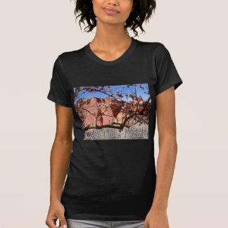 Capitol Reef T-shirts
