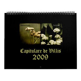 Capitulare de Villis 2009 Calendar