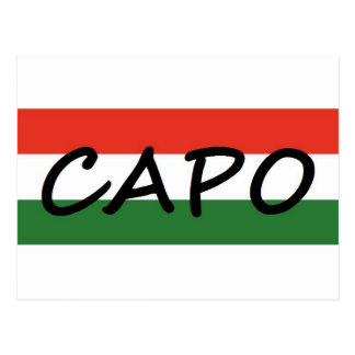 Capo with green and red stripes, show style! postcard