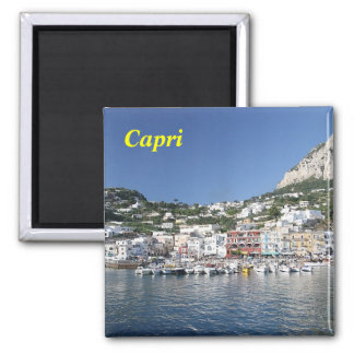 capri_island, Capri magnet