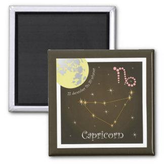 Capricorn 22 more december fin 20 schaner magnet