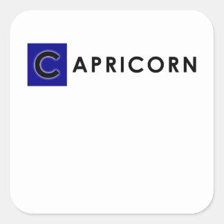 CAPRICORN COLOR SQUARE STICKER