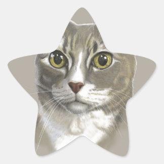 Captain domestic short hair cat star sticker