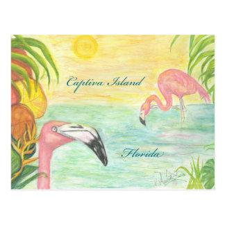 Captiva Island Flamingos Florida Art Postcard