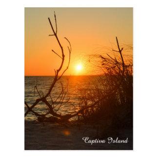 Captiva Sunset postcard
