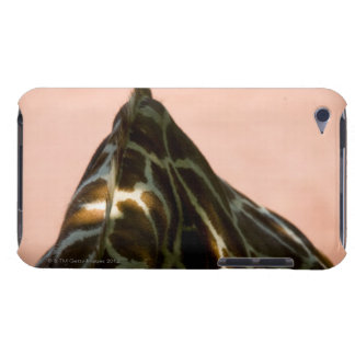 Captive animal iPod touch Case-Mate case