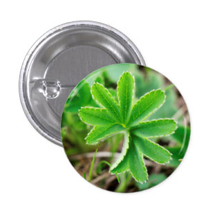 Capturing Clover in Kyrgyzstan: Cool Nature Photo 1 Inch Round Button