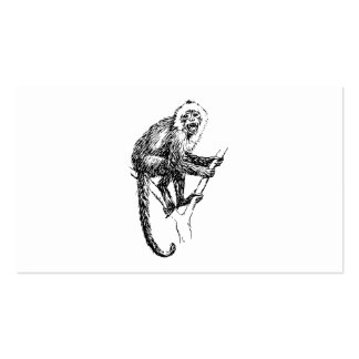 Capuchin Monkey Business Cards