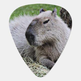 capybara 07 guitar pick