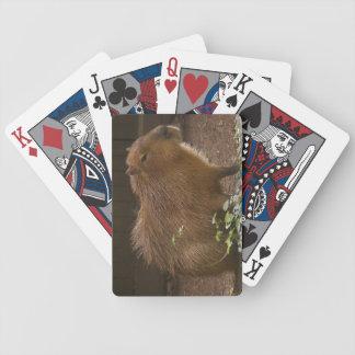 Capybara Bicycle Playing Cards