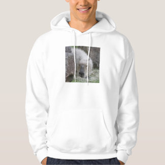 capybara hooded sweatshirt