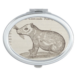 Capybara Mirrors For Makeup
