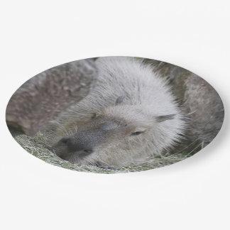 capybara paper plate