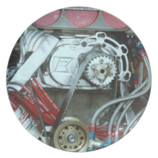 Car Motor From The Cajun National's Party Plates