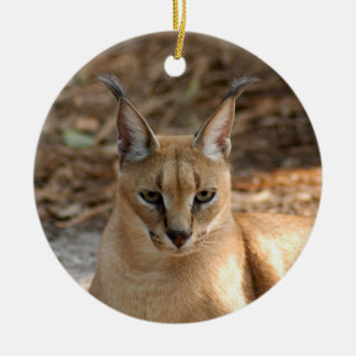 Caracal Lynx Christmas Ornament