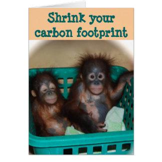 Carbon Footprint Advice Card