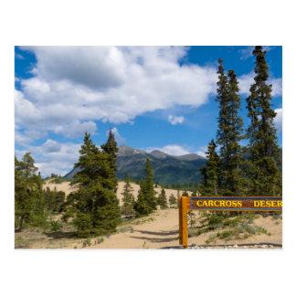 Carcross desert, Yukon Postcard