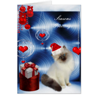 Card Christmas Fluffy White Grey Cat