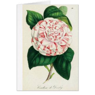 Card De Felicitación - Camellia