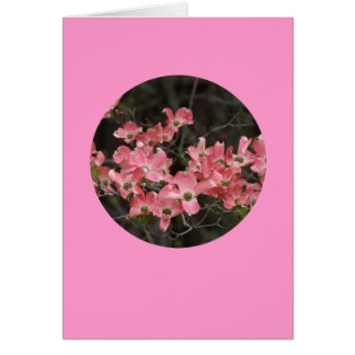 "Card, ""Dogwood Blossoms in Circle"" # 5 Card"