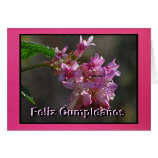 Card - Feliz Cumpleaños - Flores de color rosa