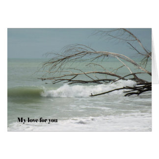 Card for Love and Romance, Image of the Sea