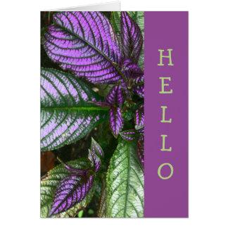 "CARD,""HELLO"" PLANT/PURPLE AND GREEN/PERSIAN SHIELD CARD"