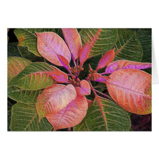 Card Holiday Poinsettia in Rosie Pink