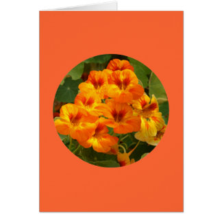 "Card, ""Nasturtiums in Circle"" D-1 Card"