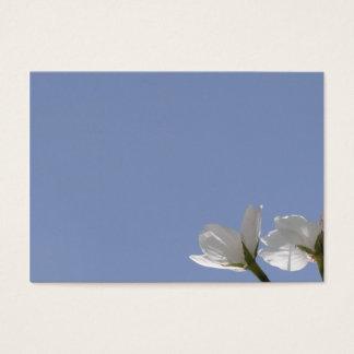 Card of cherry tree bloom
