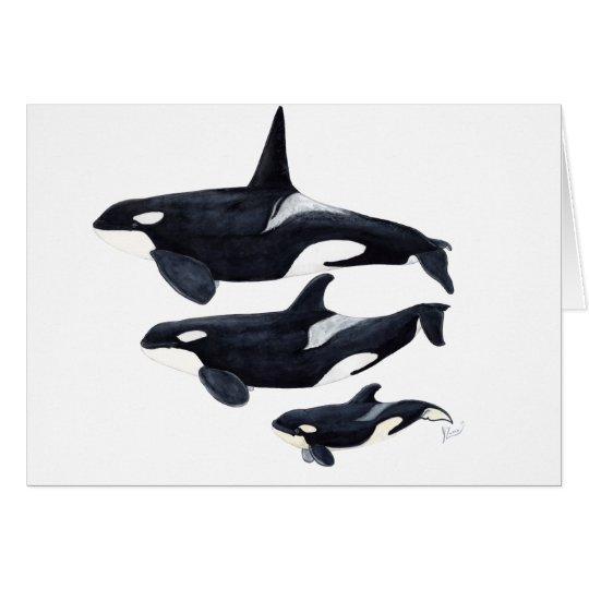 Card orca