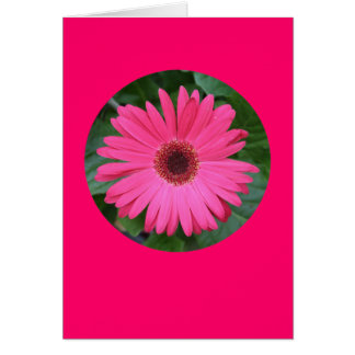 "Card, ""Pink Gerber Daisy in a Circle"" B-1 Card"