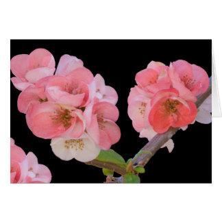 Card, Plum Blossoms Card