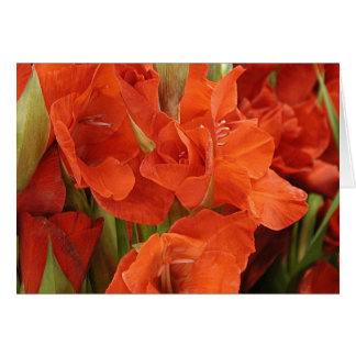 """Card, """"Red  Glads # 1"""" Card"""