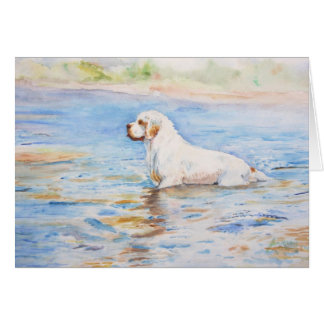 card - Reflection - Clumber Spaniel