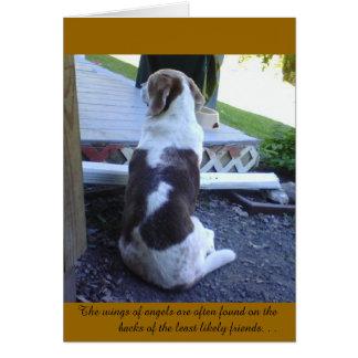 Card - Sympathy Card -Pet