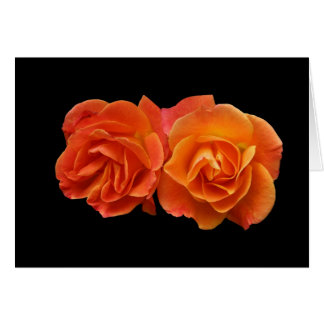 "Card, Two Perfect Apricot Roses"" Card"