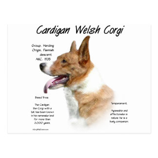 Cardigan Welsh Corgi History Design Postcard