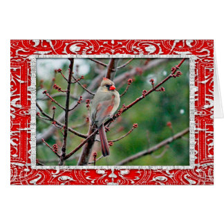 Cardinal 4539 Horizontal Card Christmas Card