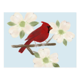 Cardinal and Dogwood Watercolor Postcard