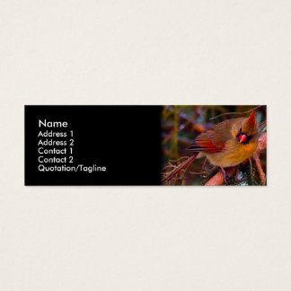 Cardinal Birds Mini Business Card