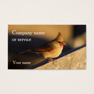 Cardinal Business Card