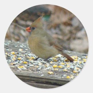 Cardinal (Cardinalis cardinalis) Female Songbird Round Sticker