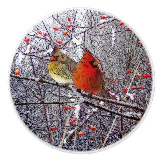 Cardinal Christmas Knob Ceramic Knob