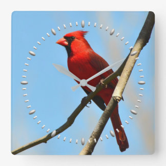 Cardinal Clock by Julie Everhart