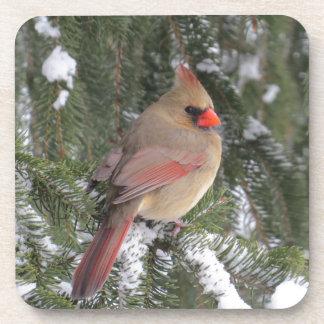 Cardinal Drink Coasters
