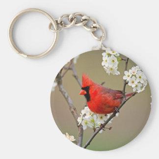 Cardinal du nord porte-clé rond